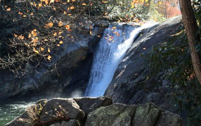 Roan Mountain Hymn of Praise